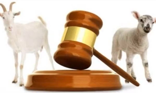 sheep-and-goats-judgment